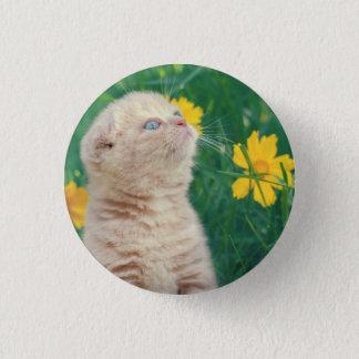 Kitten in the Flowers Pinback Button