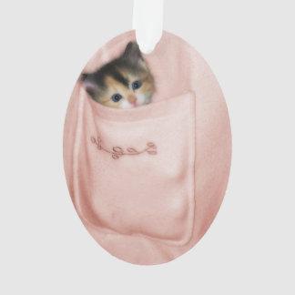 Kitten in the Pocket 2