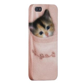 Kitten in the Pocket 2 iPhone SE/5/5s Case