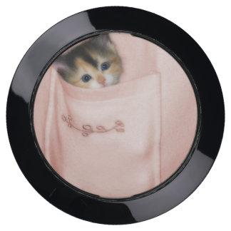 Kitten in the Pocket 2 USB Charging Station