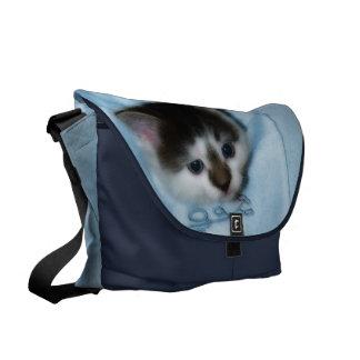 Kitten in the Pocket Courier Bag
