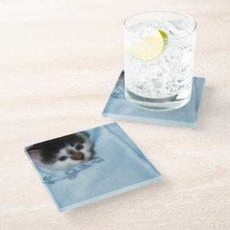 Kitten in the Pocket Glass Coaster