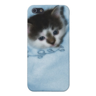 Kitten in the Pocket iPhone SE/5/5s Cover