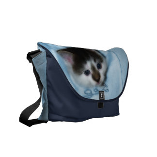 Kitten in the Pocket Messenger Bag
