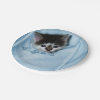 Kitten in the Pocket Paper Plate