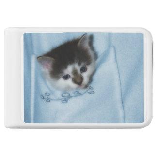 Kitten in the Pocket Power Bank