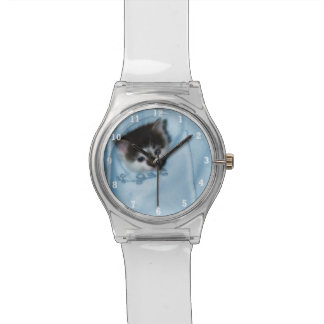 Kitten in the Pocket Wrist Watches