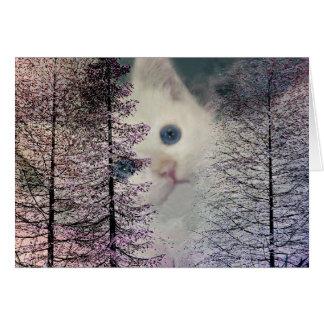Kitten in Woods Note Card