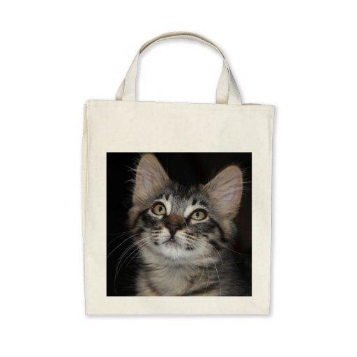 Kitten Innocence Organic Grocery Tote Bag
