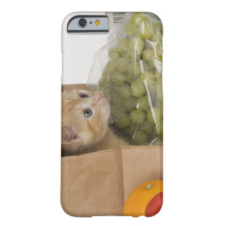 Kitten inside grocery bag barely there iPhone 6 case