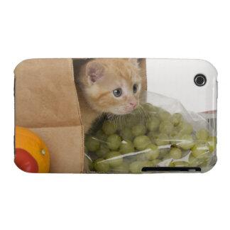 Kitten inside grocery bag iPhone 3 case