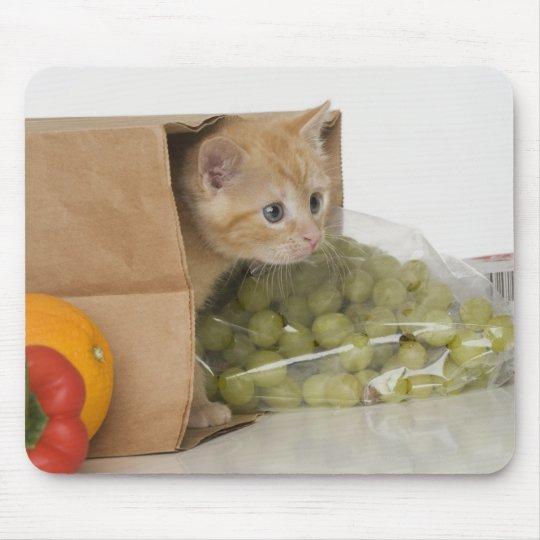 Kitten inside grocery bag mouse pad