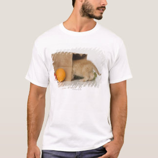 Kitten inside grocery bag T-Shirt