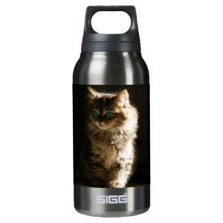 Kitten Insulated Water Bottle