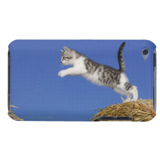 Kitten Jumping 2 Barely There iPod Cover
