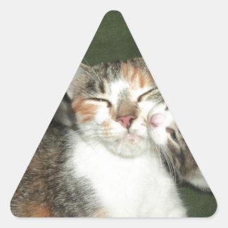 Kitten Kiss Triangle Sticker