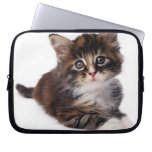 Kitten Laptop Computer Sleeve