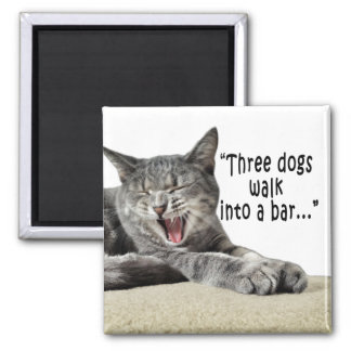 Kitten laughs about hilarious dog joke 2 inch square magnet