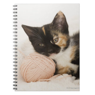 Kitten laying on ball of string notebook