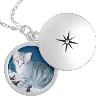 Kitten Locket Necklace