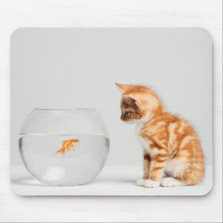 Kitten Looking At Fish In Bowl Mouse Pad