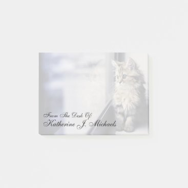 Toddler & Baby themed Kitten Looking Out Window Post-it Notes