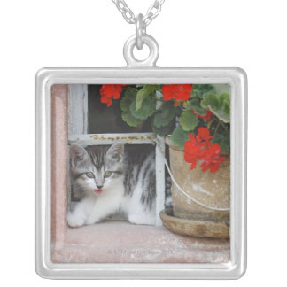 Kitten Looking Out Window Silver Plated Necklace