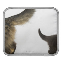 Kitten Looking up at its Mother's Tail Sleeve For iPads