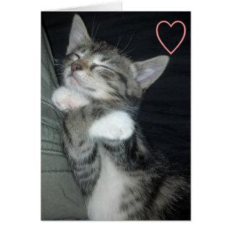 Kitten Love Cards
