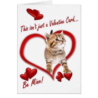 Kitten Love In An Envelope Card