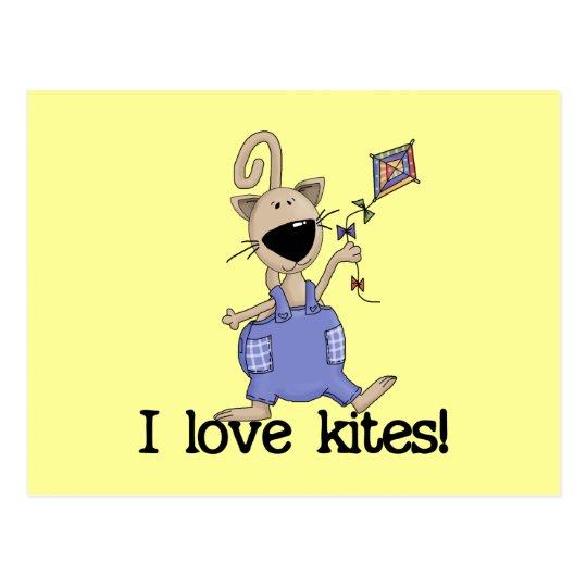 Kitten Love Kites Tshirts and Gifts Postcard