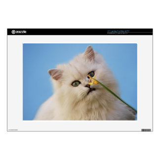 "Kitten loving the daffodil 15"" laptop skin"