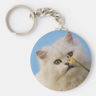 Kitten loving the daffodil keychains