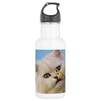 Kitten loving the daffodil stainless steel water bottle