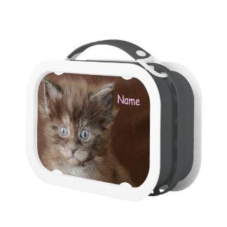 Kitten Lunchbox