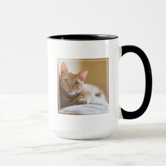 Kitten Lying On The Couch Mug