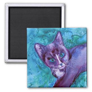 """Kitten Magnet - """"Purple Tuxedo"""""""