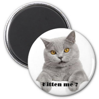 kitten me ? refrigerator magnet