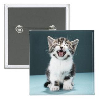 Kitten meowing button