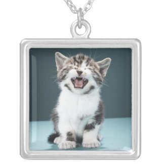 Kitten meowing silver plated necklace
