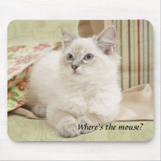 kitten mousemat mouse pad