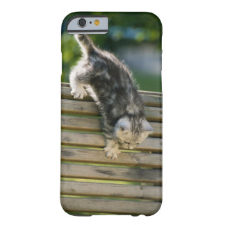 Kitten moving down on bench barely there iPhone 6 case