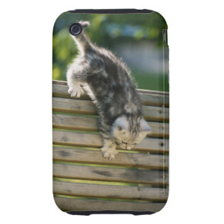 Kitten moving down on bench tough iPhone 3 case