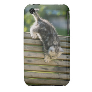 Kitten moving down on bench iPhone 3 cover
