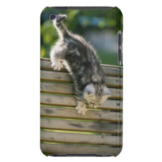 Kitten moving down on bench iPod touch case