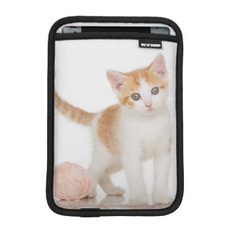 Kitten Next To Ball Of String Sleeve For iPad Mini