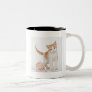 Kitten Next To Ball Of String Two-Tone Coffee Mug