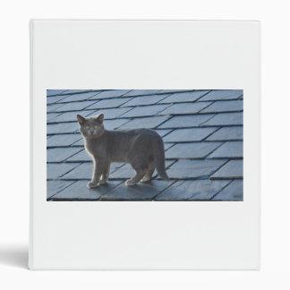 Kitten on a Slate Roof Binder