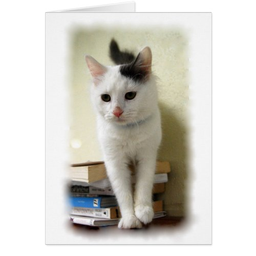 Kitten on Books Card