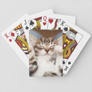 Kitten on lap. poker deck
